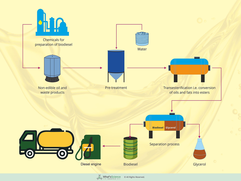 Biodiesel image 2