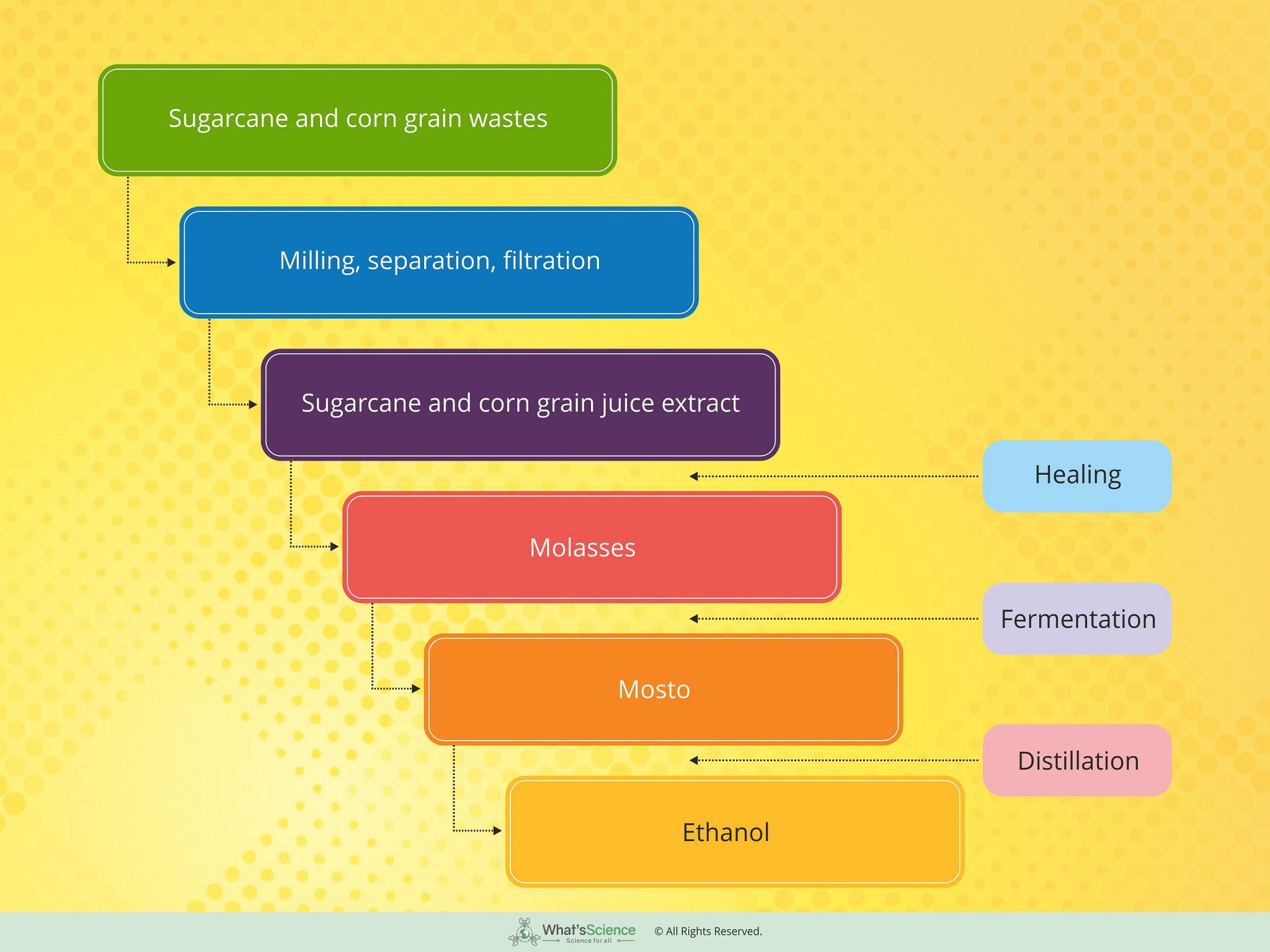 Bioethenol_Flow chart